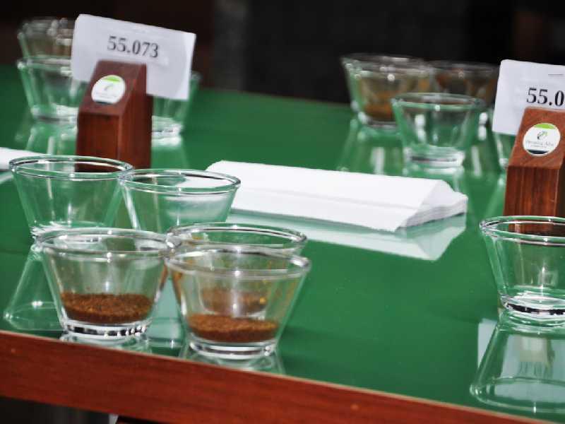 Integrantes da comissão julgadora fizeram a degustação e avaliação dos cafés inscritos no concurso