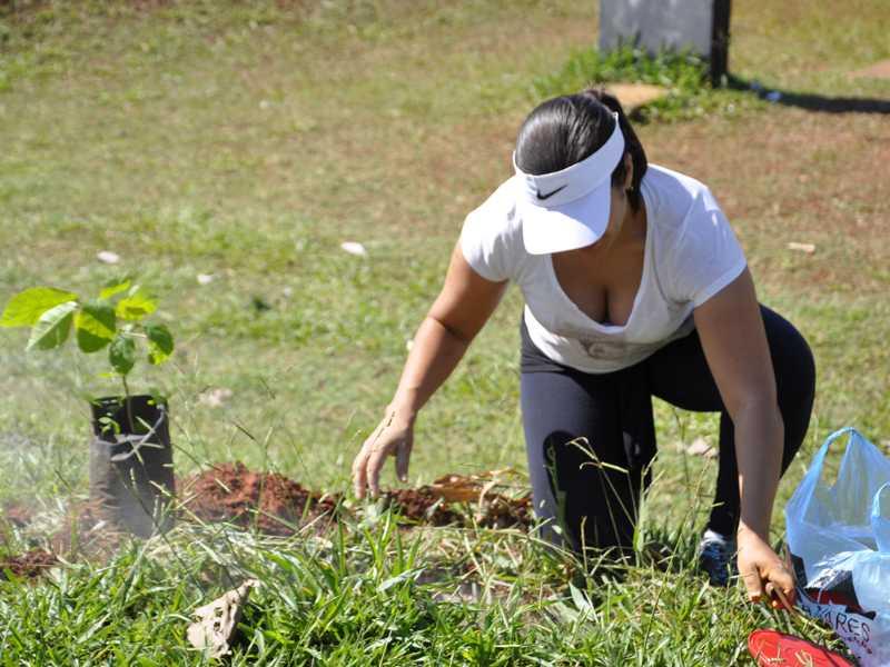 Como já acontece com o Plano Municipal de Arborização haverá plantio de mudas de árvores na Semana de Meio Ambiente
