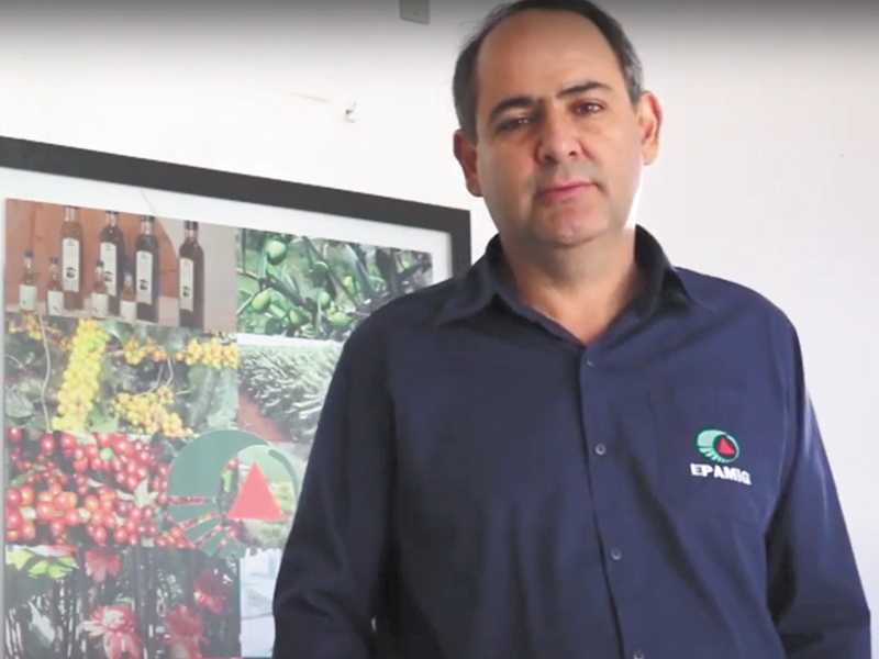 O engenheiro agrônomo César Elias Botelho, pesquisador, chefe regional da EPAMIG