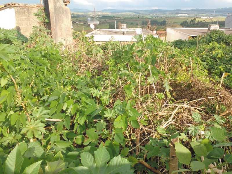 Terreno sujo de mato e detritos que fica localizado na Rua Artur Pires de Moraes entre as casas residenciais de números 67 e 81, está incomodando oferecendo riscos na Saúde dos moradores da Vila Muschioni