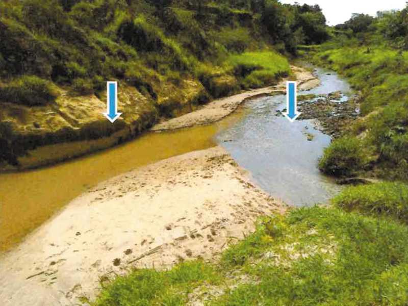 Córrego Rangel (28/03/2019), ponto de mistura do córrego limpo com esgoto bruto