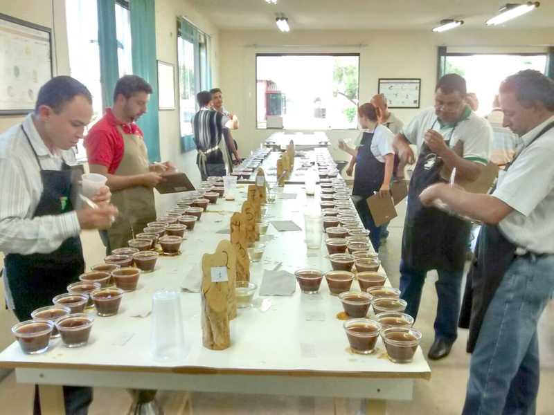 Concurso reúne amostras dos melhores cafés  produzidos em Paaíso, na região e em Minas Gerais