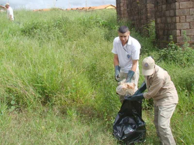 Terrenos e quintais sujos favorecem procriação do mosquito e podem causar epidemia de dengue em Paraíso
