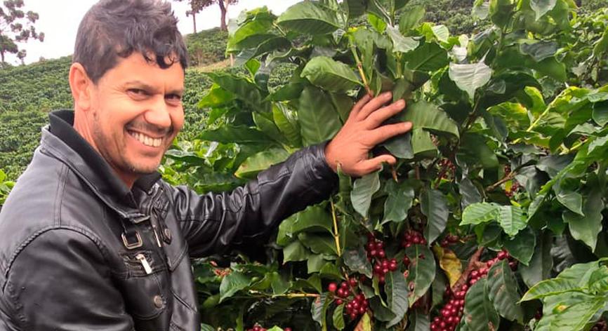 Programa certifica Minas Cafe aumenta competitividade para pequenos produtores