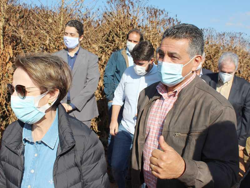 Deputado Federal Emidinho Madeira com a Ministra Tereza Cristina em cafezal atingido em Alfenas