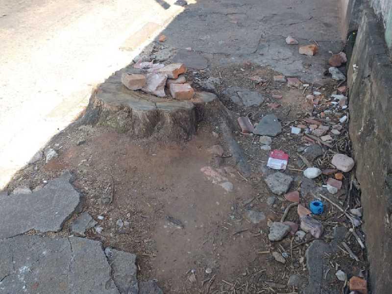 Vejam o tamanho do estrago e de um toco do tronco de uma árvore que impede a passagem de cadeirantes e de carrinhos de bebês na calçada da Av. Dr. Delfim Moreira, no bairro Lagoinha