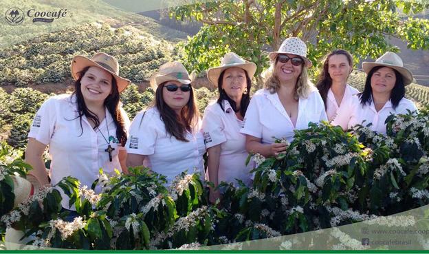 Encontro em Paraíso reunirá mulheres produtoras de cafés especiais do Sul de Minas e Nordeste Paulista